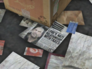 JohnnyNewspaper-gtav
