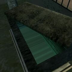 Inside the open coffin.
