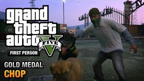 GTA 5 - Mission 5 - Chop First Person Gold Medal Guide - PS4
