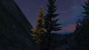 Mount Gordo-X