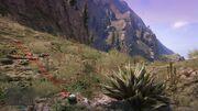 Peyote Plants GTAVe 04 Mt ChiliadNorth View