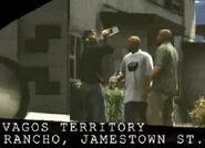 Vagos gang members -1-