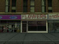 Flowers (SA)