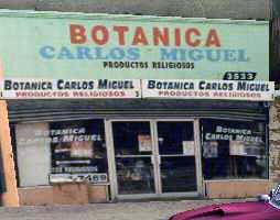 Botanica-carlos-miguel-3