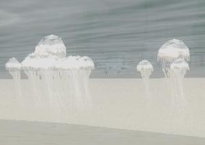 Медузы-2