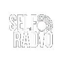 GTAV-SelfRadio