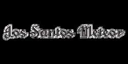Los Santos Meteor (logo)
