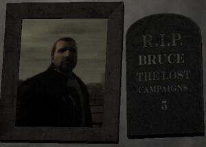 Bruce-TLAD-1-