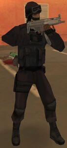 305px-SWAT