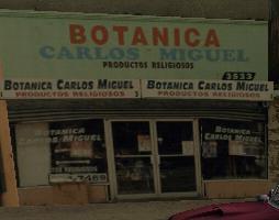 Botanica-2