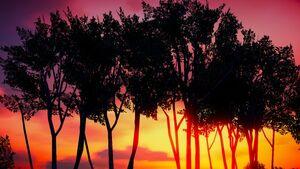 Sunset in Lago Zancudo