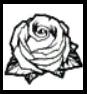 Róża (tatuaż - SA)