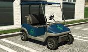 Wózek golfowy (V)