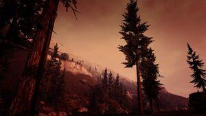 Paleto Forest-XXVIII