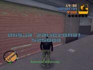 Grand Theft Auto (8)