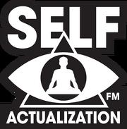 Self-Actualization FM (ambient chillout)
