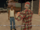 Body Harvest GTA San Andreas (fin).png