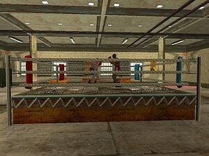 Below the Belt Gym GTA San Andreas (ring)