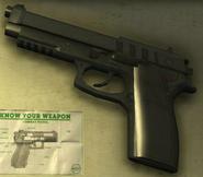 Pistol-GTAV-Display