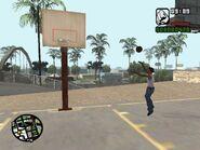 Koszykówka (SA)