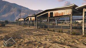 Cow Farm-2