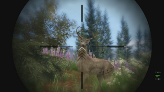 Hunting-GTAV