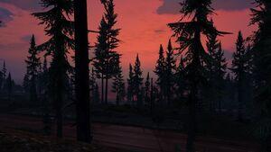 Paleto Forest-XXVII