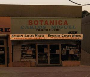 Botanica-carlos-miguel-2