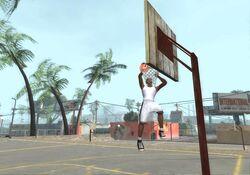 Баскетбол-GTASA