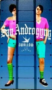 Swallow-8