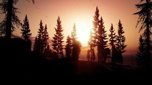 Paleto Forest-XX