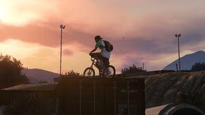 Redwood Lights Track-VI