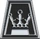 Albany (logo)