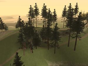 Fern Ridge-4