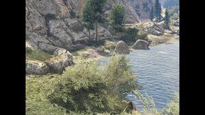 Cassidy Creek-XVI