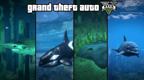 GTA 5 - Play as a Fish (Shark, Dolphin, Killer Whale, Stingray & more) PS4 & Xbox One