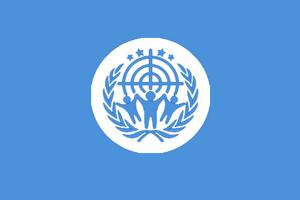 CC Flag1