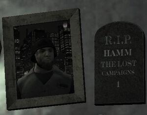 Hamm-1-