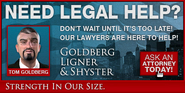 Goldberg-GTAIV-AD
