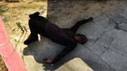 Peter Dreyfuss dead2
