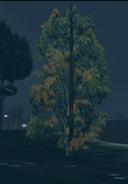 Tree-GTA3-1