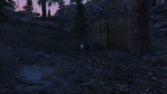 ForestSurvival-GTAO-HealthPack2