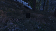 ForestSurvival-GTAO-ArmourPickup2