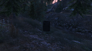 ForestSurvival-GTAO-ArmourPickup1
