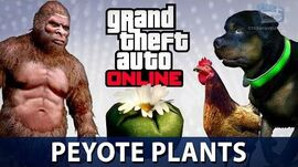 GTA Online - All 76 Peyote Plants Locations (Play as an Animal in GTA Online)