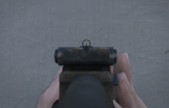 File:Assault Rifle GTAVe FPS Iron.jpg
