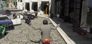 GTA5-Caught