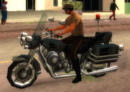 Motor officer (GTAVCS) (mounted)