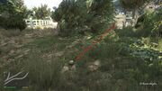 Peyote Plants GTAVe 22 El Burro Parking View