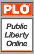 Publiclibertyonline.com-GTAIV-WebBanner